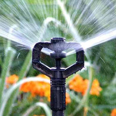 Ứng dụng đầu phun mưa tưới cây Rotor Max