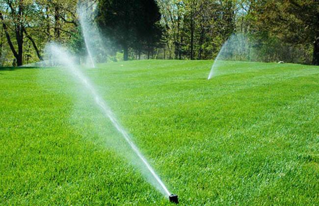 Béc phun tưới cỏ Rotor 5004 với kết cấu hạt mưa to phù hợp tưới khu vườn