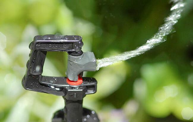 Đầu tưới phun mưa mini Rotor rain ren 21.