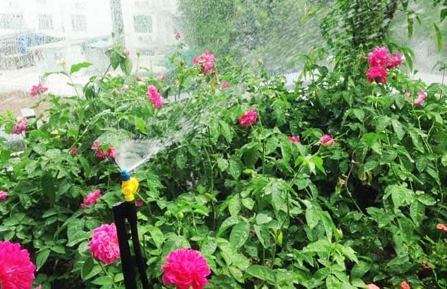 Hệ thống tưới sân vườn đang hoạt động để tưới cho ban công
