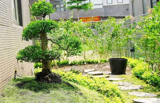 Có 1 khu vườn đẹp là điều ai cũng mong muốn